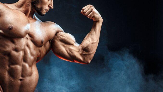 Øg din muskelmasse med dette træningsprogram